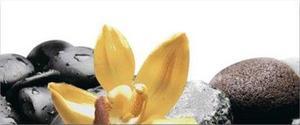 Orchid Yellow декор 1- 2 части